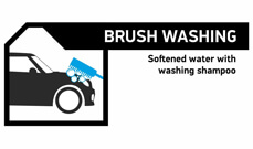 Brush washing